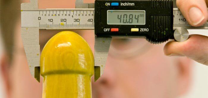измеряет член