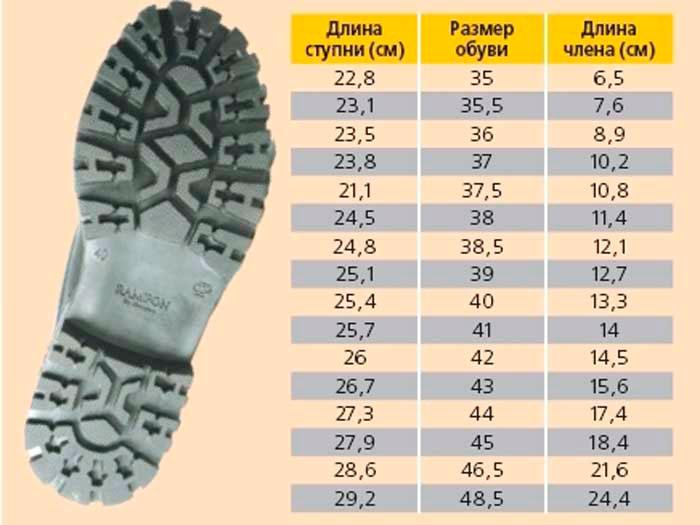 размер члена по обуви