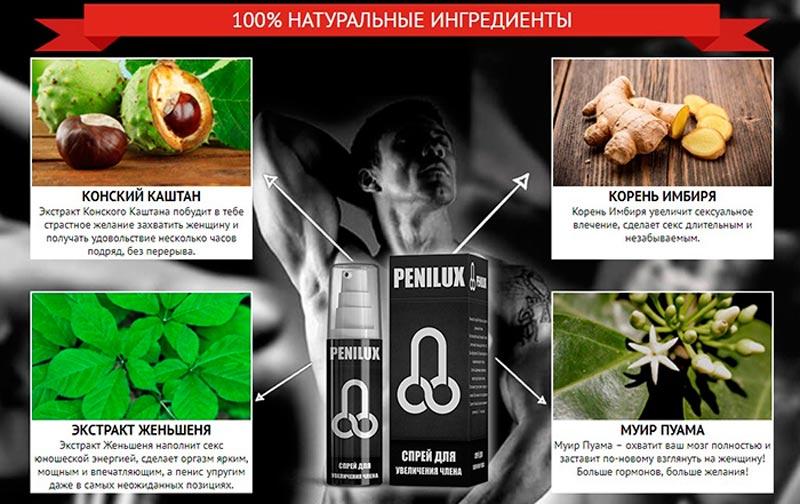 состав пенилюкса